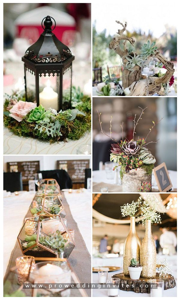 Centerpieces and table settings Creative and Unique Succulent Wedding
