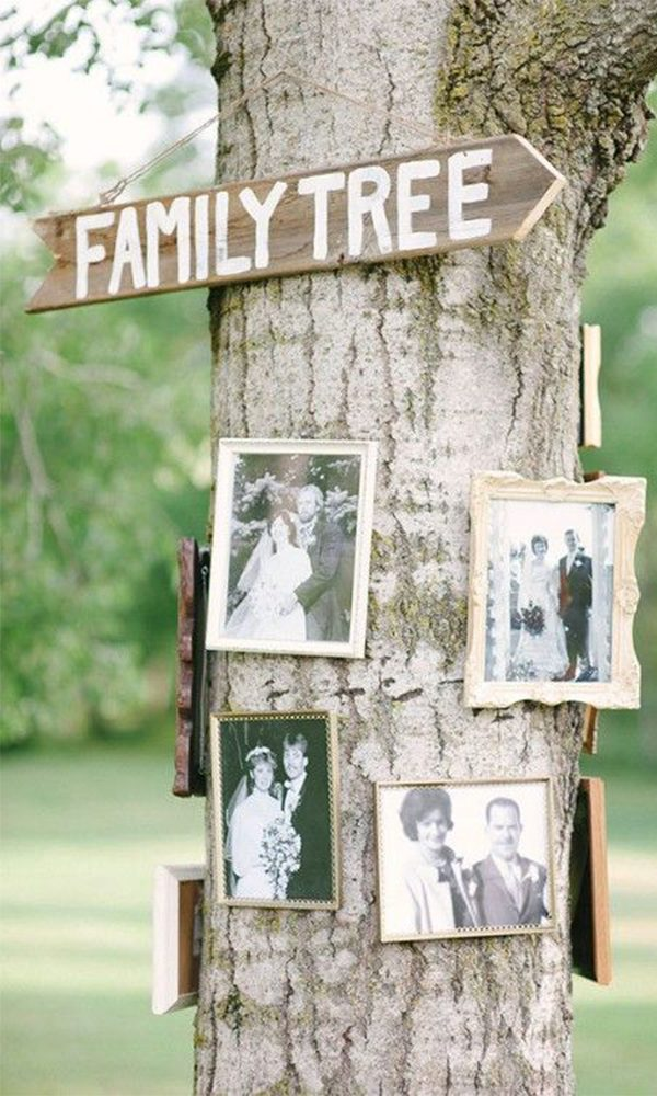 Creative DIY Vintage Wedding Ideas with Photo Frames