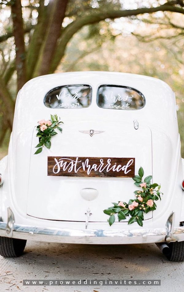 Just Married Banner-30+ Creative Ideas to Decorate Your Wedding Car